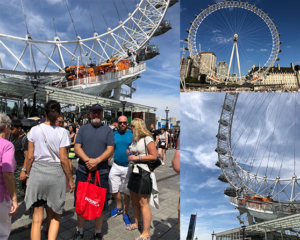 BNAC, London, London eye, Panolin